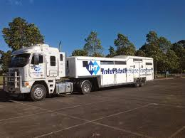 sydney horse transport