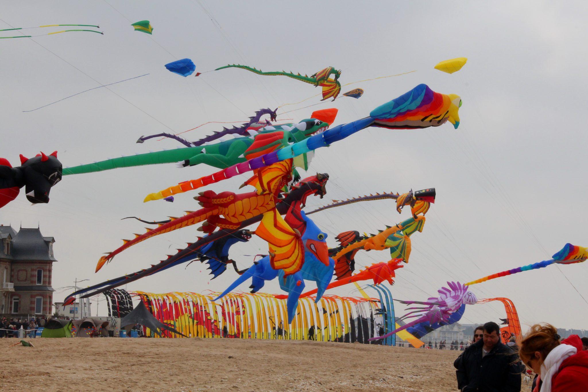 Kite Festival in Delhi