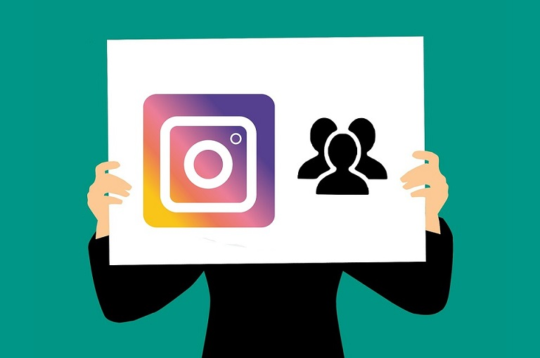 Instagram Profile growth