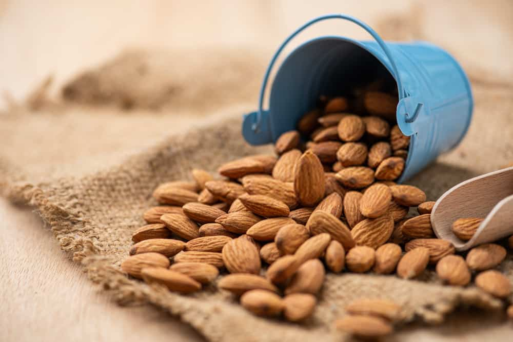 Almonds – Make Your Weight Loss Journey Easier
