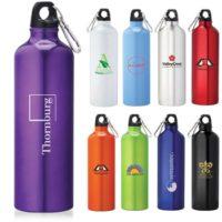 Buy Promotional Aluminum Bottle from PapaChina