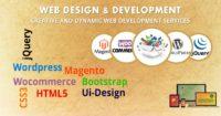 Best Web Design and Development Company in Delhi - Invoidea